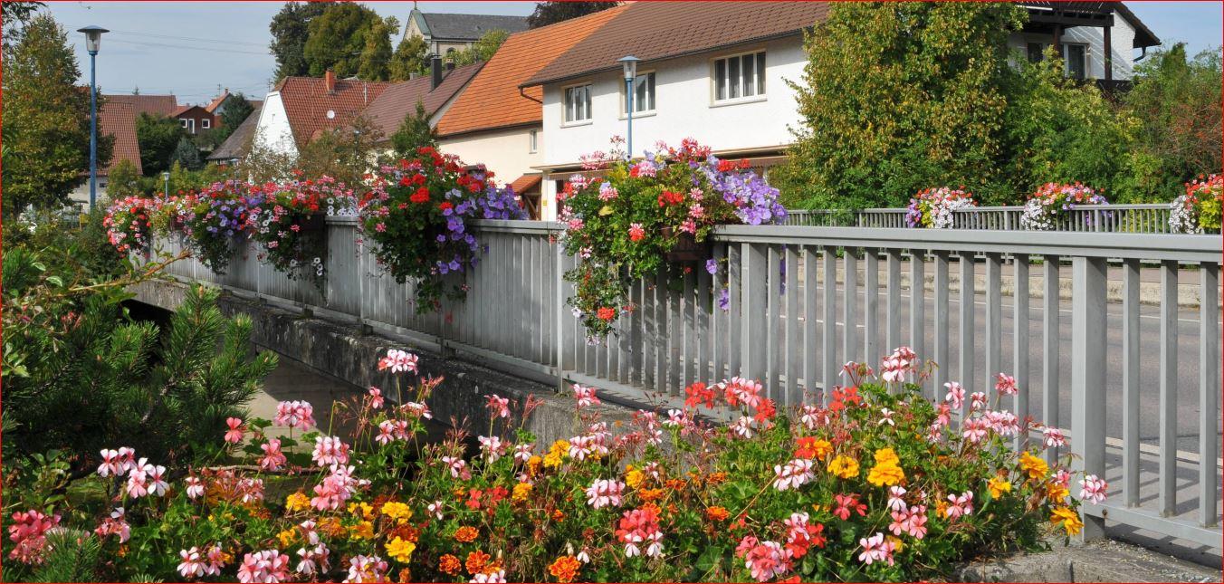 Blumen Gupfenstraße neu