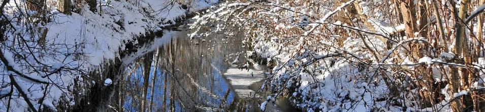 Winter am Neckar