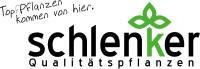 Schlenker Qualitätspflanzen Logo